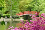 Duke Gardens in the Spring by ted3020, photography->landscape gallery