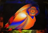Polly Is That You? by mesmerized, abstract->fractal gallery