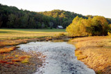 Creek at Waterloo by carzie, Photography->Landscape gallery