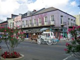 French Quarter Horse (and Buggy) by mrosin, photography->city gallery