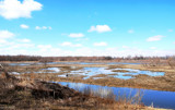 The Kankakee Marsh Lands #2 by tigger3, photography->landscape gallery