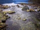 Homfray Creek by mayne, Photography->Shorelines gallery