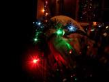 Glowing Christmas Lights by clarkephotography, Holidays->Christmas gallery