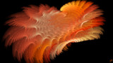 Orange Fluff by Joanie, abstract->fractal gallery