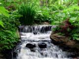 Free Flow - Unframed by Hottrockin, Photography->Waterfalls gallery