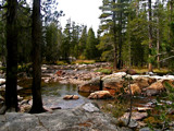Tuolumne River by scarecrow, Photography->Landscape gallery