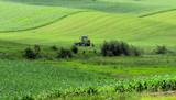 Green Fields of Iowa by Starglow, photography->landscape gallery