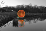 Orange Mono Reflection by slybri, photography->shorelines gallery