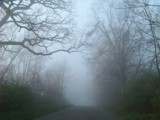 FOGGED UP by thebitchyboss, Photography->Landscape gallery