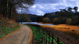 NATURAL BEAUTY by LANJOCKEY, photography->landscape gallery
