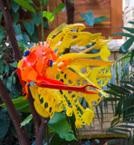 Recycled Fish by Pistos, photography->sculpture gallery