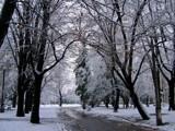 snowpark by ekowalska, Photography->Landscape gallery