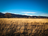 February's Meadow by radare, photography->landscape gallery