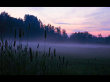 Foggy night by velvet_, Photography->Landscape gallery