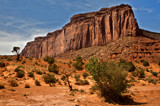 leaning trees and a rock face at monument valley by jeenie11, photography->landscape gallery