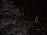 Snowing in the Night by walther75, photography->landscape gallery
