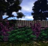 Sunday Mornin by Vessmer, computer->landscape gallery