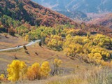 Autumn Drive by Paddlenround, Photography->Landscape gallery