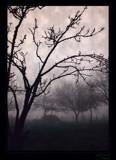 Dark Hour, Prelude by jesouris, Photography->Manipulation gallery