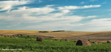 Farm Field by doughlas, photography->landscape gallery