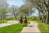 Countryside Ride by corngrowth, photography->people gallery