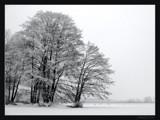 winter lake by ekowalska, Photography->Landscape gallery