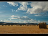 Hay Field by MiLo_Anderson, Photography->Landscape gallery
