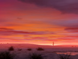 Under A Desert Sky by DixieNormus, Computer->Landscape gallery