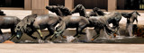 Wild Mustangs of Las Colinas by SR21, photography->sculpture gallery