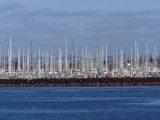 Aukland Harbor Forest by irvgberg, Photography->Boats gallery
