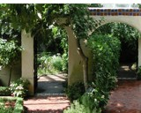 Mediterrainian Patio by jojomercury, photography->architecture gallery