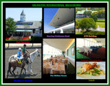 Arlington International Racecourse 1 by trixxie17, photography->general gallery