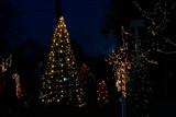 Christmas by photog024, Holidays->Christmas gallery