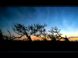 Twilight Silhouettes by jesouris, Photography->Manipulation gallery