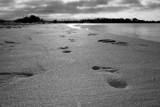 Walking Away by pauldb, photography->shorelines gallery