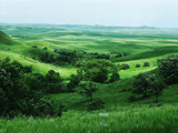 Very green valley by alharkrader, Photography->Landscape gallery