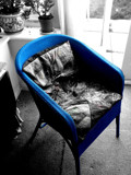 Blue chair. by cowfresh, Photography->Manipulation gallery