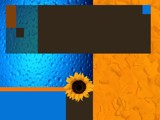 sunflower by babak, abstract gallery
