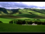 Soft Green of Spring by photoimagery, Photography->Landscape gallery