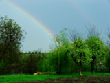 rainbow in a golden bucket by anacris, Photography->Landscape gallery