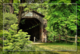 Vandalized by Jimbobedsel, Photography->Bridges gallery