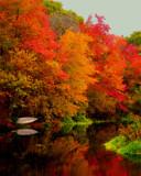 Reflection at Shannock Falls by kramden11, photography->landscape gallery
