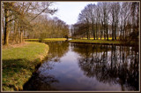 Bare Trees Reflections by corngrowth, Photography->Landscape gallery