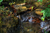 Mini Cascade at Stanton by Nikoneer, photography->waterfalls gallery