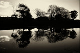 Silhouette Reflections by LynEve, photography->landscape gallery