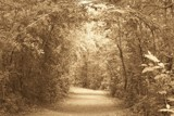 Gateway to My Dreams?? by kidder, Contests->Dreams gallery
