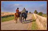 Horse Ride by corngrowth, Photography->Animals gallery