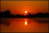 Image: Sunrise Mist