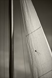 more sails by JQ, Photography->Boats gallery