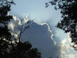 Heaven Dreams by sunnymay, Contests->Dreams gallery